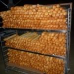Pane per la vita